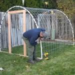 Build Greenhouse Pics