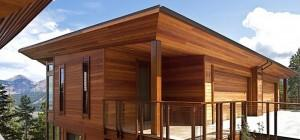 Cedar Siding Pod Home Exterior Design
