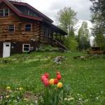 Cozy Vermont Log Home Getaway Montpelier