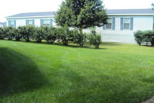 Dutch Double Wide Used Mobile Manufactured Homes