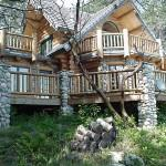 Enter True Log Homes Your Source Custom Built