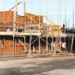 Experts Warn Drive Green Homes Created Potentially Lethal