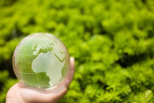 Going Green Steps Sustainability Starts Home