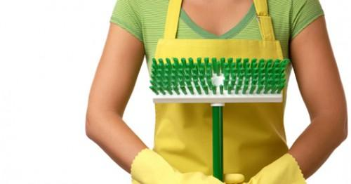 Green Ecolabelled Cleaning Products Overall Budget