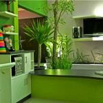 Green Homes Designs