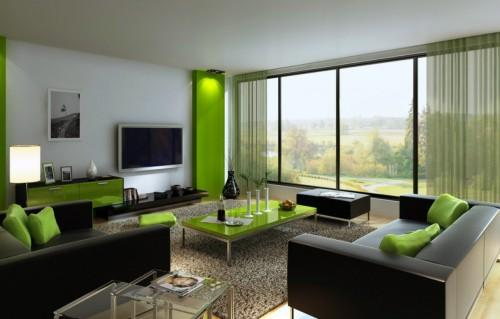 Green Living Tips Your Home