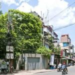 Green Renovation Leafy Waterfall Like Ade Transforms Musty Old