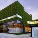 Green Roof Walls Living Building