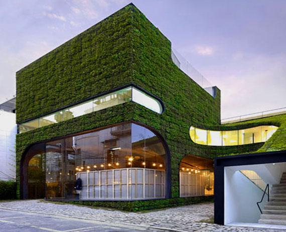 Green Wall Roof House Design Ideas