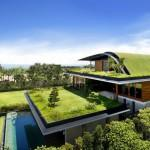 Green Walled Buildings Inspiring Your Own Plant Cladded Home