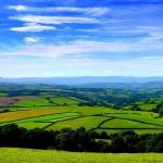 Greeting Cards Wales Green Grass Home