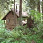 Handbuilt Cabin Washington State