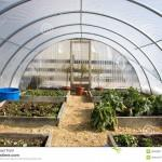 Homemade Greenhouse Constructed Aluminum Tubing Sheets