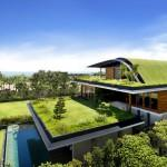 Green Living Homes