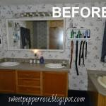 Mobile Home Bathroom Remodeling Photos Heart Song