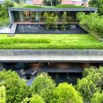 Modern Home Singapore Garden Green Roof Pool Wall House
