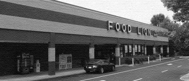 Neighborhood Shopping Center Development Anchored Food Lion