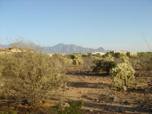 Sale Area Green Valley Real Estate Market Just