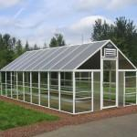Small Green House Glass Design