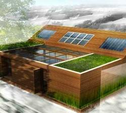 Small Eco Homes