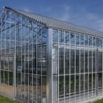 Solar Panels Keep Greenhouses Cooler Summer Let Sun Through