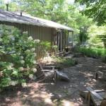 Sweet East Asheville Home Great Original Features Beautiful