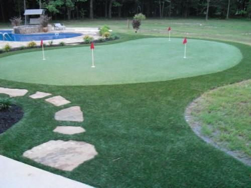 Synthetic Home Putting Green
