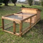Tips Buying Efficient Chicken Coops Sale