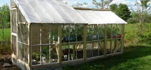 Top Tips Building Diy Greenhouse