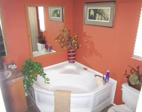 Tub Option Glamour Bath Best Quality Modular Homes Sale