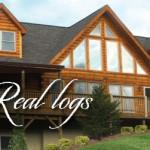 Why Blue Ridge Log Cabins Revolutionizing Home Industry