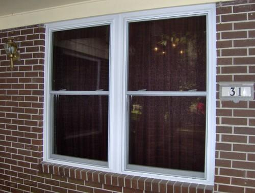 Windows Mobile Home Pic Fly Vinyl Replacement